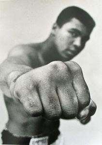 champ - boxing